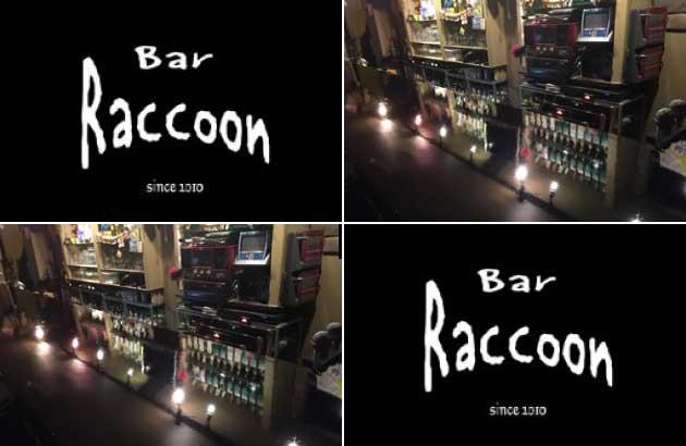 Bar Raccoon